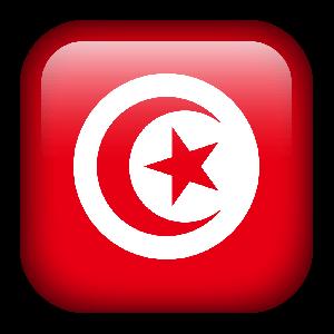 omegle world video chat tunisia